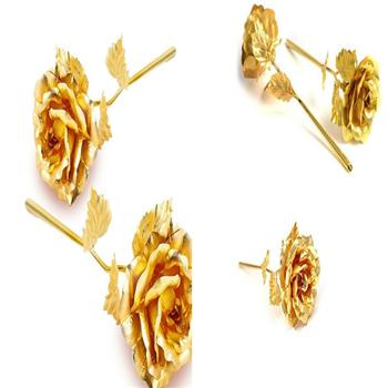 گل رز طلا