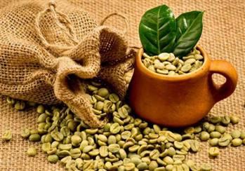 قهوه سبز 250 گرمی